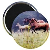 Galloping Horses 2.25&quot; Magnet (10 pack)
