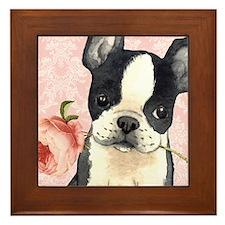 Boston Terrier Rose Framed Tile