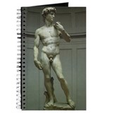 Michelangelo: David Journal