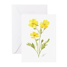 Cinquefoil Greeting Cards (Pk of 20)