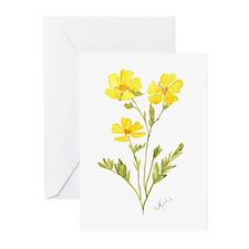 Cinquefoil Greeting Cards (Pk of 10)