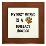 My best friend is a BLUE LACY HOG DOG Framed Tile