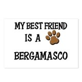My best friend is a BERGAMASCO Postcards (Package