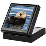 Wild Female Otter Keepsake Box