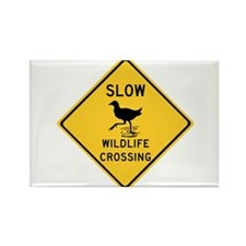 Slow Wildlife Crossing, Australia Rectangle Magnet