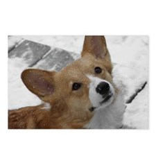 Snow Corgi Postcards (Package of 8)