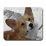 Snow Corgi Mousepad