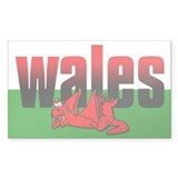Cartoon Dragon Rectangle Sticker 50 pk)