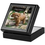 Norfolk Terrier Playmates Keepsake Box