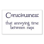 Consciousness Naps Rectangle Sticker 50 pk)