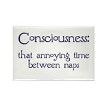 Consciousness Naps Rectangle Magnet (100 pack)