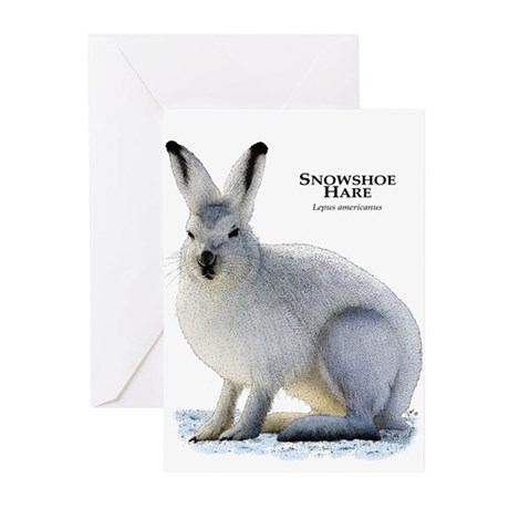 Snowshoe Hare Greeting Cards (Pk of 20)
