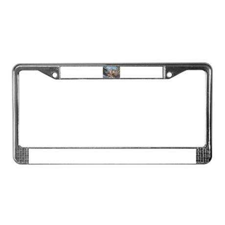 Neuschwanstein Castle License Plate Frame