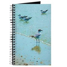 Gulls on the Beach Journal