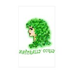 Naturally Curly Irish Hair Rectangle Sticker 10 p