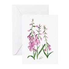Foxglove Greeting Cards (Pk of 20)