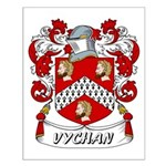 Vychan Coat of Arms Small Poster