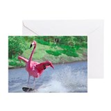 Flamingo skiing on Greeting Cards (Pk of 20)
