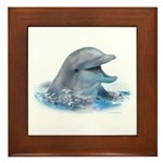 Happy Dolphin Framed Tile