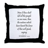 NUMBERS  14:15 Throw Pillow