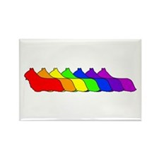 Rainbow Skye Rectangle Magnet