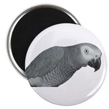 Unique Pet parrot Magnet