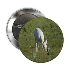 "Rare White Deer 2.25"" Button (10 pack)"