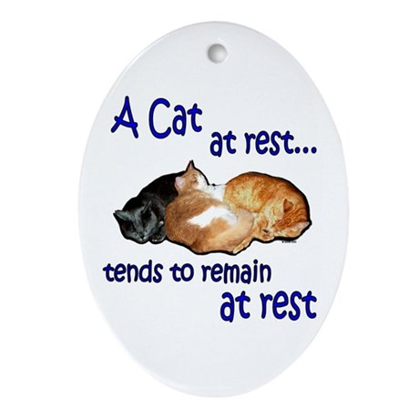 Laws of Physics Cats Oval Ornament