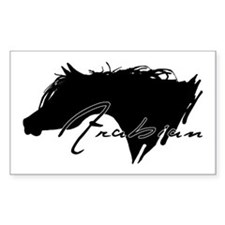 Arabian Horse Rectangle Decal
