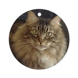 Maine Coon Cat Keepsake (Round)