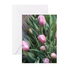DianeYoung Photography Greeting Cards (Pk of 10)