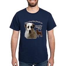 someanpnger T-Shirt
