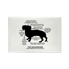 Dachshund Chart Rectangle Magnet