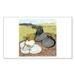 Trumpeter Pigeon Pair Rectangle Sticker 10 pk)