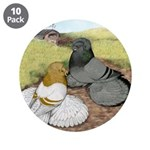 "Trumpeter Pigeon Pair 3.5"" Button (10 pack)"
