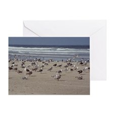 diane Young Photography Greeting Card