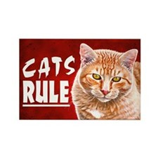 Orange Tabby CATS RULE Rectangle Magnet