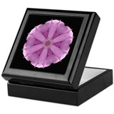 Rosa Belle Poitevine I Keepsake Box