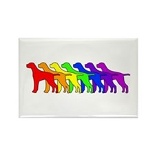 Rainbow Pointer Rectangle Magnet