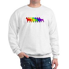 Rainbow Rat Terrier Sweater