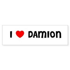 I LOVE DAMION Bumper Car Sticker