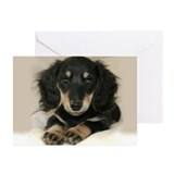 Long Haired Puppy Greeting Cards (Pk of 20)