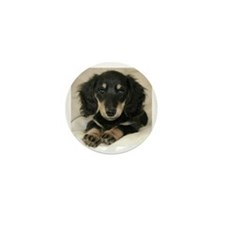Long Haired Puppy Mini Button (10 pack)