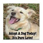 Adopt A Dog Today! Tile Coaster