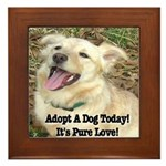 Adopt A Dog Today! Framed Tile