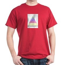Employee Hierarchy of Needs T-Shirt