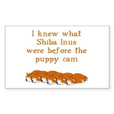 Shiba Puppy Cam Rectangle Sticker 10 pk)