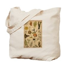Antique Botanical--Mushrooms Tote Bag