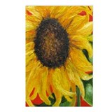 """Sunflower"" Postcards (Package of 8)"