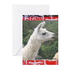 Lama Love - Greeting Cards (Pk of 10)